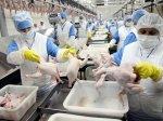 «Сертифицированная» борьба российских птицеводов за европейский рынок