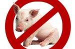 Россия ограничила ввоз свинины из Белоруссии