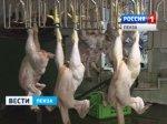 Пензенская область заняла второе место в ПФО по объемам производства бройлеров
