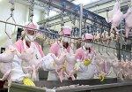 Беларусь ограничила поставки мяса птицы из Израиля