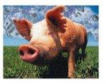 США: Розничные цены на свинину достигли рекордных высот в августе