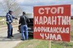 Украина частично закрывает движение на границе из-за распространения в России африканской чумы свиней