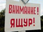 Беларусь запретила поставки скота из Забайкальского края России из-за ящура