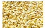 Аналитики предрекают светлое будущее китайскому сектору птицеводства