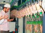 Под Краснодаром открывается цех по производству мяса халяль