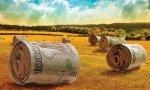 Кубанским фермерам выделили еще 200 млн рублей