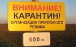 В Московской области обнаружили очаг Африканской чумы свиней