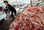 США критически оценивают возможность импорта мяса птицы из Китая
