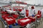 Югу России не хватает мясоперерабатывающих агрохолдингов