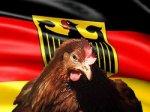 В Россию временно ограничен ввоз живой птицы из отдельных территорий Германии