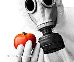 В США продолжается битва за маркировку продукции ГМО