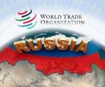 Утверждены правила взаимодействия органов госвласти по вопросам участия России в ВТО