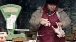 В Беларуси дорожает мясо цыплят-бройлеров