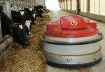 Роботизированную ферму планируется построить в Пензенской области