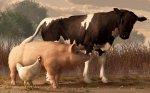 Спад животноводства повлиял на выпуск сельхозпродукции в целом