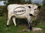 Новый еврокомиссар займется упрощением Общей сельскохозяйственной политики ЕС