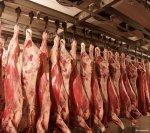 Под Оренбургом заработал итальянский мясокомбинат за 100 млн. евро