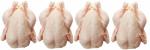Замораживание птицы защитит от отравления