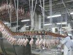 Производство птицы на убой в России в 2014 составило 5579,1 тыс. тонн