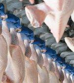 Производство мяса птицы в России в первом квартале выросло на 11,4%