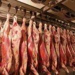 Минсельхоз усилит контроль за забоем скота