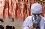 Временные ограничения на ввоз животноводческой продукции из Израиля ввел Россельхознадзор