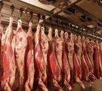 Производство говядины в России снизилось на 0,5%