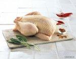 Евразийская ассоциация поможет выходу мяса птицы из Азербайджана на рынки СНГ
