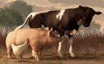 Россельхознадзор не исключает заноса в Крым ряда заболеваний животных