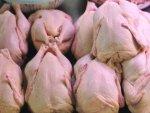 В Мурманской области отмечается рост объёмов производства мяса птицы в 7,6 раза