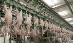 Как производители мяса Казахстана вытесняют российских конкурентов