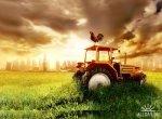 Рост сельхозпроизводства в России составил 11% за три года