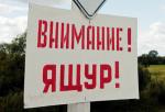 Ущерб от вспышки ящура в Башкирии оценивается в 60 млн рублей