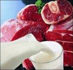 Белоруссия: прогнозные балансы Союзного государства по мясу и молоку находятся в высокой стадии готовности