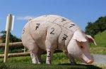 _Мировое производство свинины вырастет на 2% в 2018 году