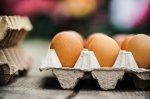 Таджикистан переходит на собственное производство куриного мяса