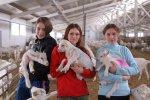 Самая крупная козья ферма в РФ откроет вторую очередь на 1300 голов