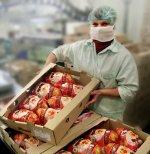 Беларусь поставила рекорд экспорта мяса птицы в Китай