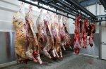 Первая партия экспортного мяса поступила в Иран из Акмолинской области